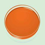 Pigment Orange 13 1